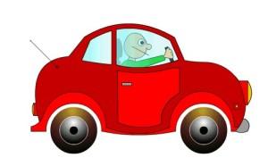 asegurar coche